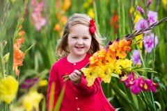 Kind die verse gladiolenbloemen plukken Stock Afbeeldingen
