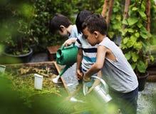 Kind in einer Gartenerfahrung und -idee lizenzfreies stockbild
