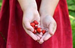 Kind en aardbeien Stock Afbeelding