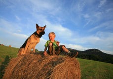 Kind en hond Royalty-vrije Stock Foto's