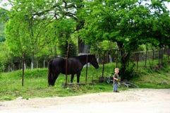Kind en paard Stock Fotografie