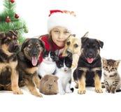 Kind en vastgestelde huisdieren Stock Fotografie
