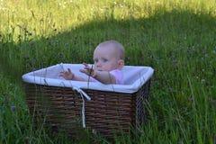 Kind erreicht heraus in einem Weidenkorb lizenzfreies stockbild
