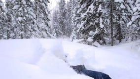 Kind fällt in den Schnee in der Zeitlupe Aktiver Sport draußen Sonniger Tag des Winters stock video