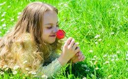 Kind genießen Duft der Tulpe beim Lügen an der Wiese Mädchen mit dem langen Haar, das auf grassplot, Grashintergrund liegt Mädche stockbilder