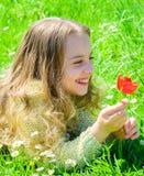 Kind genießen Duft der Tulpe beim Lügen an der Wiese Mädchen mit dem langen Haar, das auf grassplot, Grashintergrund liegt Frühli stockfotografie