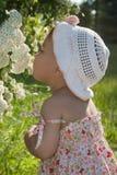 Kind genießt den Geruch der Blumen Lizenzfreie Stockfotos