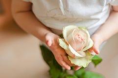 Kind hält rosafarben in seinen Händen Lizenzfreies Stockfoto