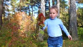 Kind in Herbst Park, der den Spaß spielt und lacht, gehend in der Frischluft hat Ein schöner szenischer Platz stock video