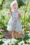kind het plukken komkommers Royalty-vrije Stock Foto