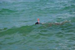 Kind het snorkelen Stock Foto