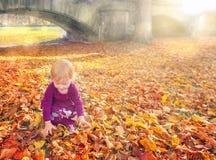 Kind het spelen met handen door gevallen bladeren Stock Afbeelding