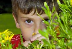 Kind hinter einer Anlage Stockfoto