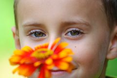 Kind hinter roter Blume Stockfoto