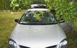 Kind im Auto auf der Natur Stockfotos
