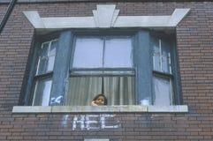Kind im Fenster des Wohn- Projektgebäudes, Süd-Bronx, New York stockfotos