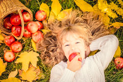 Kind im Herbstpark stockbild