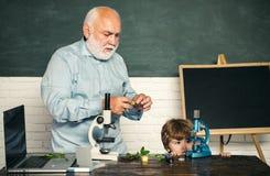 Kind lernt in der Klasse auf Hintergrund der Tafel schule Gute Lehrer genie?en zu unterrichten Kleinkindwissenschaftler lizenzfreies stockbild
