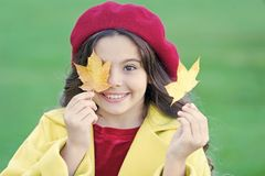 Kind met de bladerengang van de de herfstesdoorn De de herfstbehaaglijkheid is enkel rond Meisje over de herfstseizoen dat wordt  royalty-vrije stock fotografie