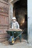 Kind met een kruiwagen Stock Afbeelding