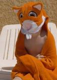 Kind met hamsterhanddoek royalty-vrije stock foto's