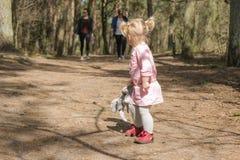 Kind mit knuddeligem Spielzeug geht in den Wald mit ihren Eltern stockfotos