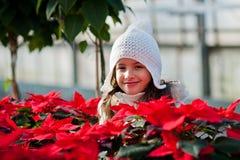 Kind mit Poinsettias stockbilder