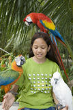 Kind mit schönen Papageien lizenzfreie stockfotos