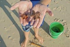 Kind mit Starfish auf Strand Stockfoto