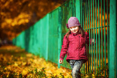 Kind nahe dem grünen Zaun auf dem Hintergrund des Herbstes Lizenzfreies Stockbild