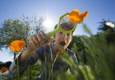 Kind, Natur mit einer Lupe beobachtend Stockbild