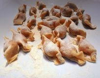 A kind of ravioli, casoncelli, traditional food of the Bergamo area, Italy.  royalty free stock image