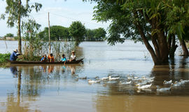 Kind, Reihenboot, Ente, vietnamesische Landschaft Stockbild