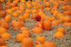 Kind in rode hoed onder pompoenen Royalty-vrije Stock Afbeelding