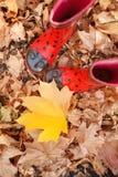 Kind-` s Gummistiefel auf Blättern lizenzfreie stockfotos