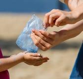 Kind-` s Hände und Farbe Holi Lizenzfreie Stockfotografie