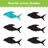 Kind-` s Lernspiel, finden korrektes Schattenschattenbild Haifisch, stellte das Spiel ein, um den rechten Schatten zu finden Auch Lizenzfreie Stockfotos
