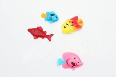 Kind-` s mehrfarbige Plastikfische Spielzeugs Lizenzfreie Stockfotos