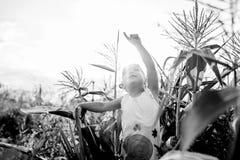 Kind-` s Weg im Mais das Mädchen im Mais abenteuer Lizenzfreies Stockbild