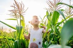 Kind-` s Weg im Mais das Mädchen im Mais abenteuer Lizenzfreie Stockbilder