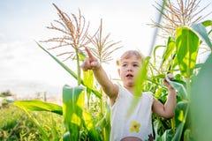 Kind-` s Weg im Mais das Mädchen im Mais abenteuer Stockbild