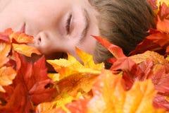 Kind schlafend in den Herbstblättern Stockfoto
