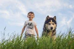 Kind spielt mit einem Hundeschwarzweiss-Schlittenhund mit blauen Augen auf grünem Feld Kinderspiel mit heiserem im Freien T?tigke stockbilder