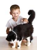 Kind tappt eine Katze Stockfoto