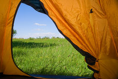Kind from a tent. Kind from tent on lawn with green grass and blue sky Stock Image