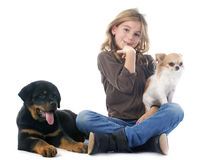 Kind und Hunde Lizenzfreie Stockbilder
