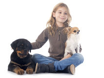 Kind und Hunde Stockbild
