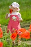 Kind unter roten Blumen stockfotos