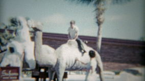 1959: Kind, welches das Kamel bei Sahara Miami Beach Hotel reitet Miami, Florida stock footage