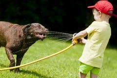 Kind, welches die Hundewasserkühlung spielt Stockbilder